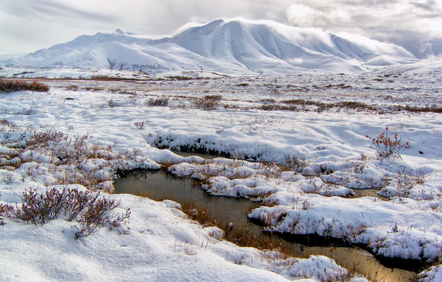 Pools in the tundra mountains